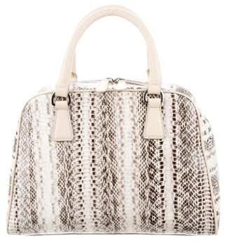 Aquatalia Python Handle Bag