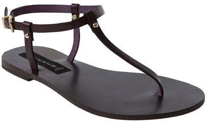 Tangita Purple