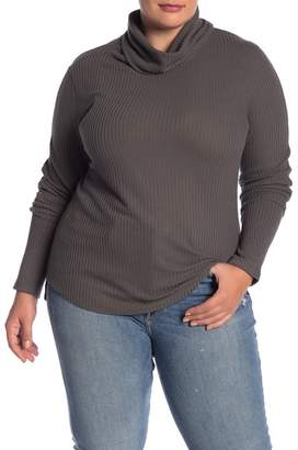 Susina Cowl Neck Knit Sweater (Plus Size)