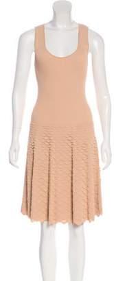 Alexander McQueen Sleeveless Knit Dress Champagne Sleeveless Knit Dress