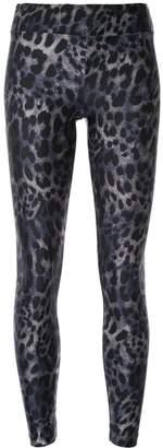 Koral Cheetara leggings