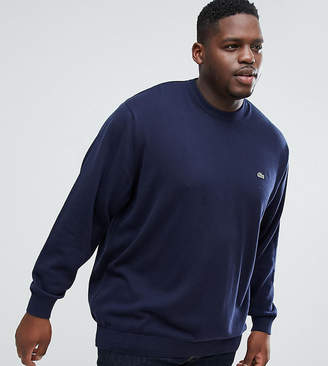 Lacoste Big Fit Crew Neck Sweater in Navy