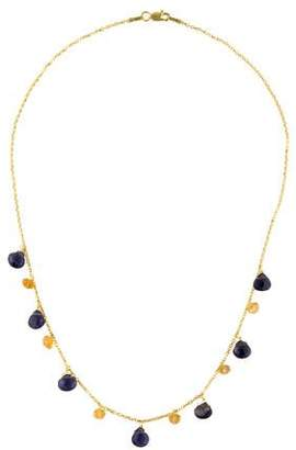 Farah Tanya 14K Citrine & Iolite Dangling Necklace