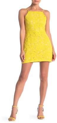Endless Rose Back Cutout Lace Mini Dress