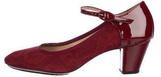 Repetto Suede Mary Jane Pumps