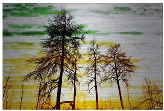 Parvez Taj Green and Gold Sky Print on Brushed Aluminum