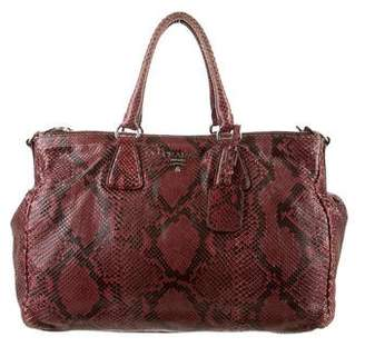Prada Python Double Bag
