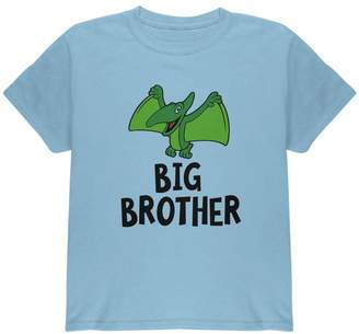 Old Glory Big Brother Dino Dinosaur Pterodactyl Youth T Shirt Light YSM
