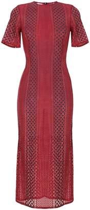 Delada tailored lace midi dress