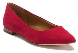 14th & Union Rowen Faux Suede Pointed Toe Flat