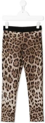 Dolce & Gabbana leopard pattern leggings