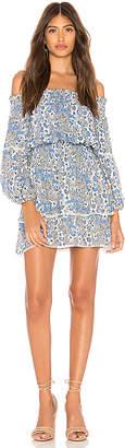 Parker Kara Dress