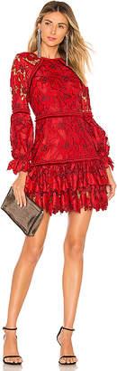 Alexis Fransisca Lace Dress