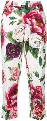 Dolce & Gabbana rose printed cropped trousers