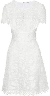 Elie Tahari Adina Guipure Lace-Paneled Embroidered Ramie Mini Dress