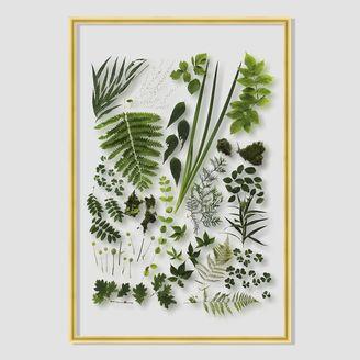 Still Acrylic Wall Art - Spring Botanicals