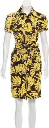 Diane von Furstenberg Cleo Shirt Dress