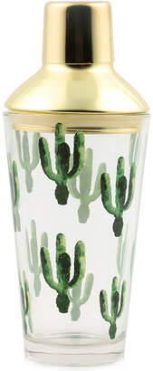 Thirstystone Closeout! Cactus Cocktail Shaker