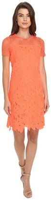 Christin Michaels Donna Chemical Lace Dress $106 thestylecure.com