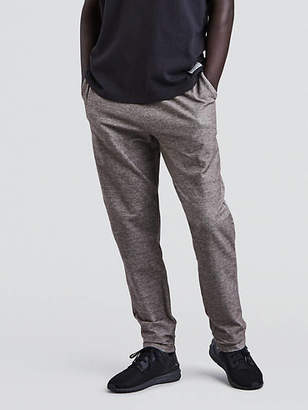 Levi's Knit Athleisure Chinos Pants