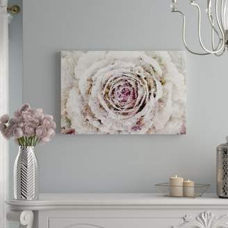 Willa Arlo Interiors 'Winter New York Flower Floral and Botanical Art' Wrapped Canvas Print
