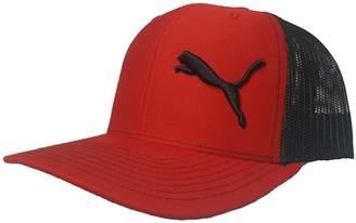 Puma Richardson 3D Puff Logo Emblem Hat Cap Unisex