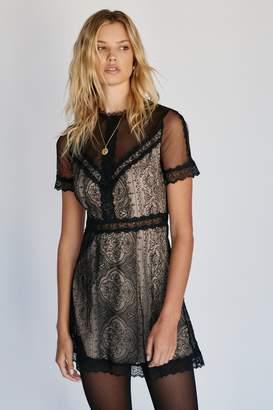 Nightcap Clothing Marais Lace Mini Dress