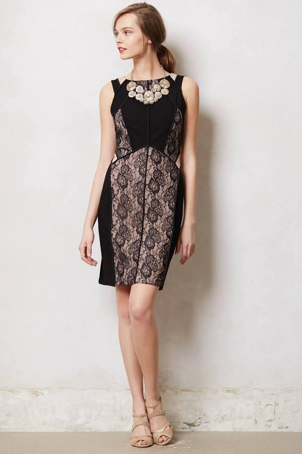 Anthropologie Paneled Lace Dress