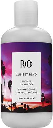 R+Co Women's Sunset Boulevard Blonde Shampoo $29 thestylecure.com