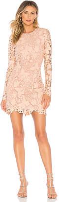 NBD X by Marco Mini Dress