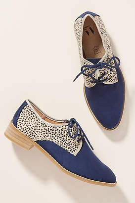 Vanessa Wu Leopard Oxfords