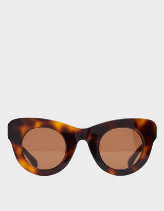 Sun Buddies Uma Sunglasses in Brown Tortoise