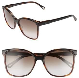 Chloé 59mm Brow Bar Sunglasses