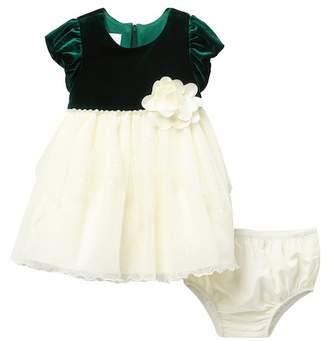 Iris & Ivy Velvet Ballerina Dress & Bloomers Set (Baby Girls)