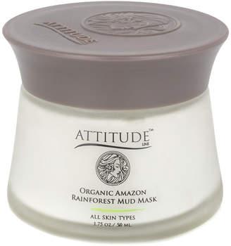 Rainforest Attitude Organic Cosmetics Attitude Organic Dead Sea Cosmetics Organic Amazon Age-Defying Mud Mask