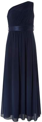 Dorothy Perkins Womens **Showcase Petite Navy 'Sadie' Maxi Dress