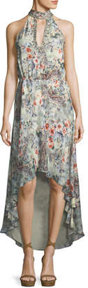 Haute Hippie Wished Upon Sleeveless Floral-Print Draped Silk Dress