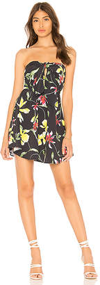 Clayton Layley Dress