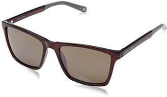Ted Baker Sunglasses Men's Wade