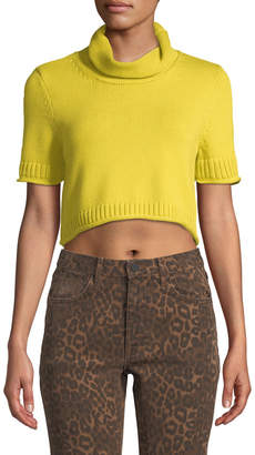 Alexander Wang Cropped Turtleneck Short-Sleeve Sweater