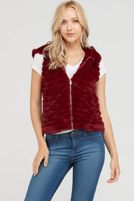 Love Tree Lovetree Burgundy Bear Vest