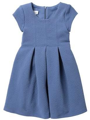 Iris & Ivy Textured Pleated Dress (Little Girls)