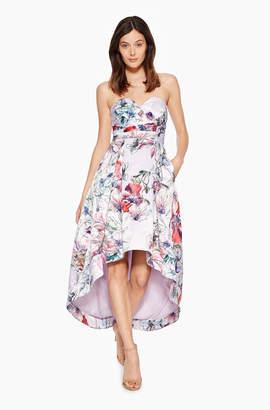Parker Clemson Floral Dress