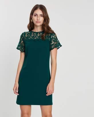 7e805f4e28 Dorothy Perkins Green Shift Dresses - ShopStyle Australia