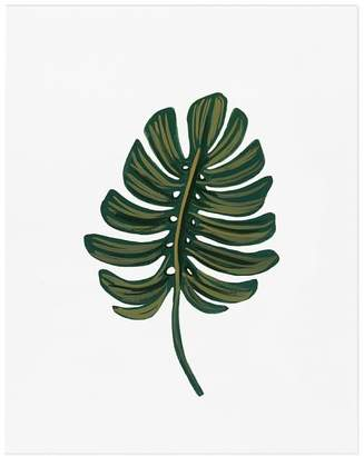 Pottery Barn Monstera Leaf by Rifle Paper Co.