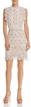 Lucy Paris Scalloped Lace Sheath Dress
