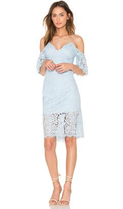 Bardot Karlie Lace Dress $118 thestylecure.com
