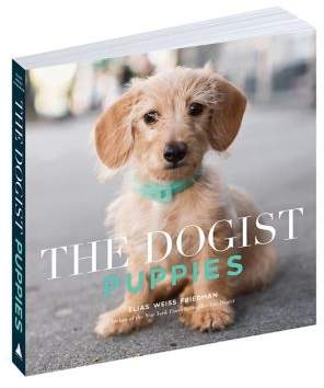 Workman Publishing The Dogist Puppies Book