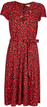 Dorothy Perkins Womens **Billie & Blossom Leopard Print Ruffle Dress