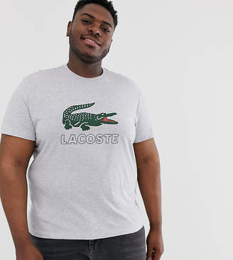 Lacoste large chest logo t-shirt in gray